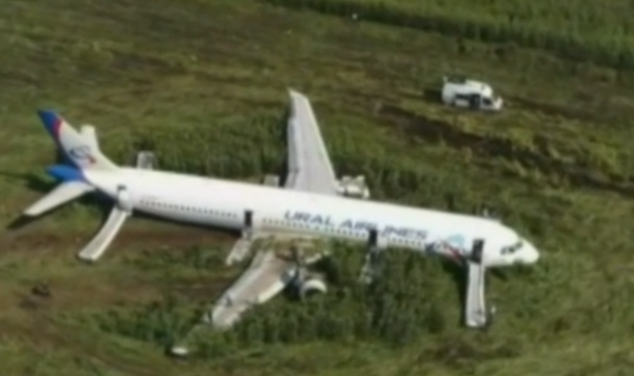 Airbus A321 crashed because of bird strike in August 2019
