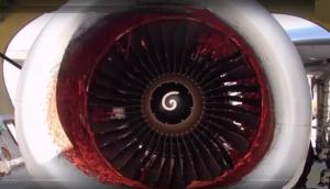 Jet engine damaged by bird strike