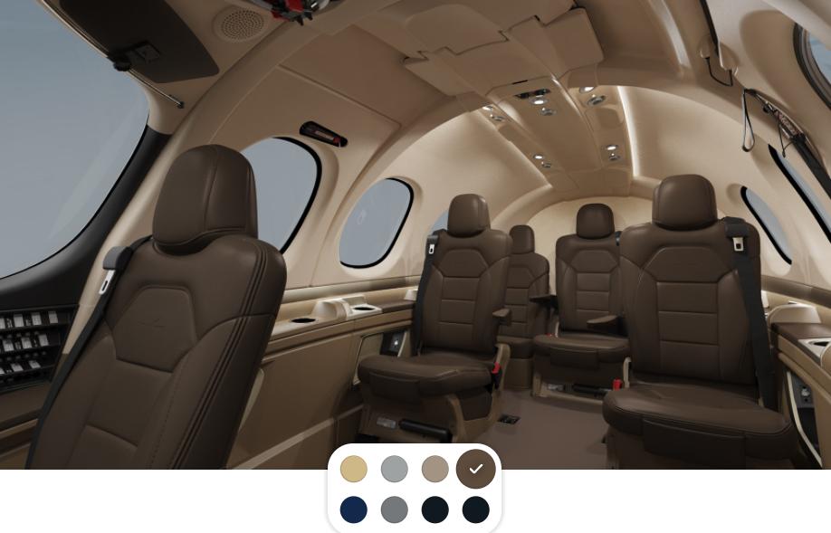 Cirrus Vision - interior (1)